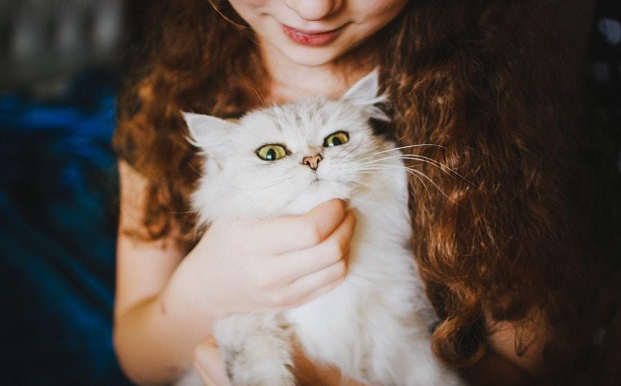 Enfant qui caresse un chat